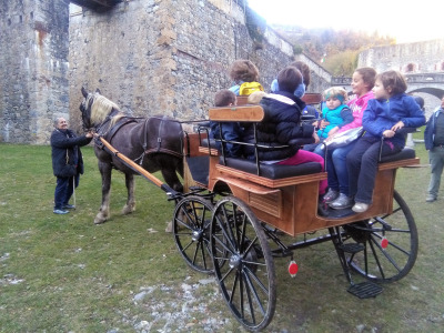 forte-in-carrozza